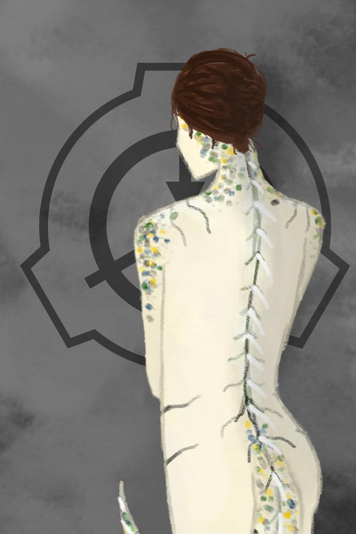 cendres_anatomy__study__by_drmandarine-da5qhxp.jpg
