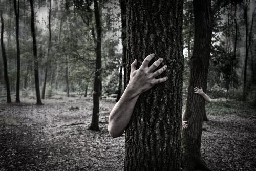 forêt_effrayante.jpg