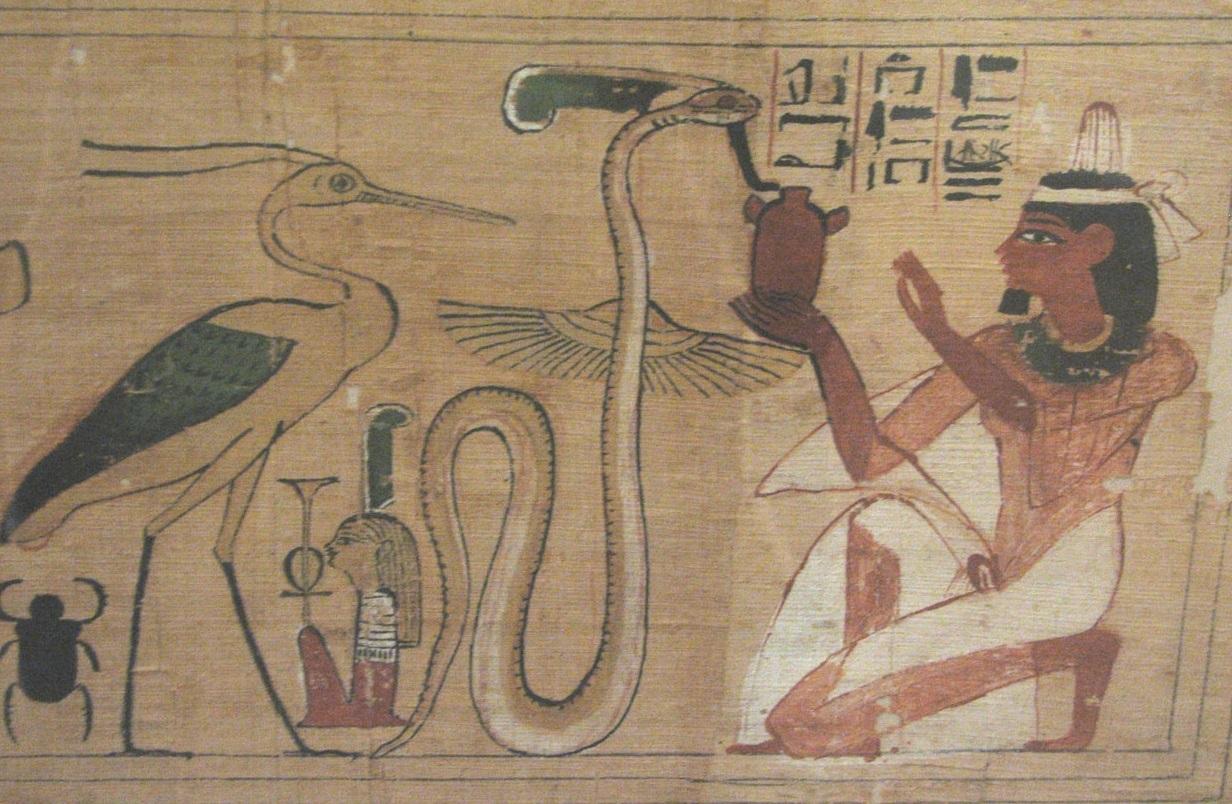 serpent-egy.jpg