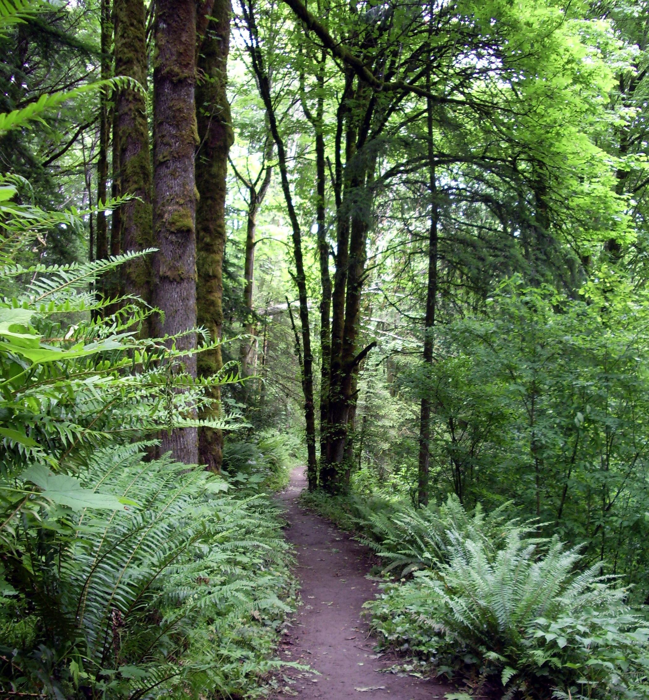 Trail Ville Sur Illon R Ef Bf Bdsultat