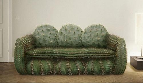 walters%20cactus